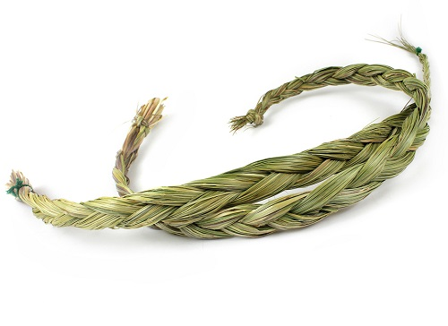 sweetgrass herb