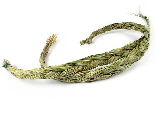 sweetgrass-herb